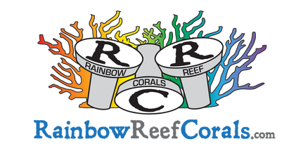 rainbowreefcorals.com